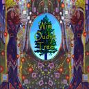 Tree/Wim Oudijk