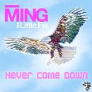 Never Come Down feat. Little Fix/Ming