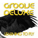 Learning to Fly/Groove Deluxe