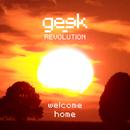 Welcome Home/Geek Revolution