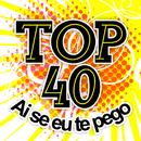 Ai Se Eu Te Pego/Top 40