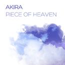 Piece of Heaven/Akira