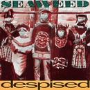 Despised/Seaweed