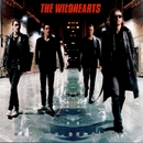 Endless, Nameless/The Wildhearts