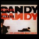 Psychocandy (Expanded Version)/The Jesus And Mary Chain