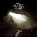 Irreversible Decay/Saille