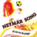 Ai Se Eu Te Pego/Neymar Song