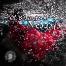 Nessaja/DJ Brainstorm