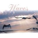 Waves/Waves