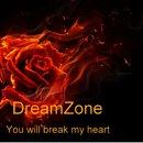 You Will Break My Heart/DreamZone
