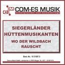 Wo der Wildbach rauscht/Siegerländer Hüttenmusikanten