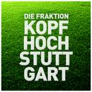 Kopf hoch Stuttgart/Die Fraktion