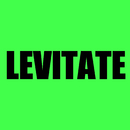 Levitate/DJ Infinite