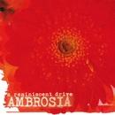 Ambrosia/A Reminiscent Drive