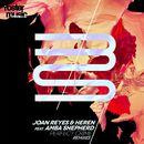 Perfect Crime [Remixes] (feat. Amba Shepherd)/Joan Reyes & Heren