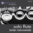 Solo Flute/Manfred Seer