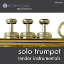 Solo Trumpet/Dirk Jess