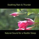 Soothing Rain & Thunder/Bmp-Music