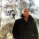 Try/Noah Francis Johnson