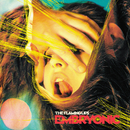 Embryonic/The Flaming Lips