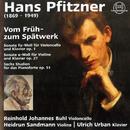 Pfitzner: Vom Früh- zum Spätwerk/Reinhold Johannes Buhl