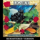 Lambrusco, coltelli, rose & pop corn [Remastered Version]/Ligabue