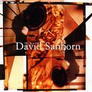 The Best Of David Sanborn/David Sanborn