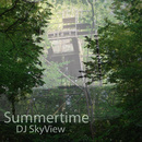 Summertime (Instrumental)/DJ SkyView