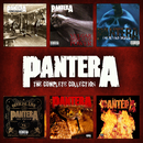The Pantera Collection/Pantera
