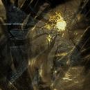 Inarborat Kosmos/Negura Bunget