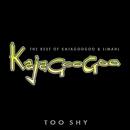 Too Shy: The Best Of Kajagoogoo & Limahl/Kajagoogoo And Limahl