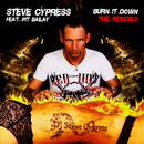 Burn It Down (feat. Pit Bailay) (The Remixes)/Steve Cypress