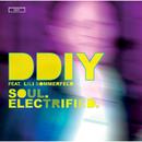 Soul. Electrified. (feat. Lili Sommerfeld)/DDIY