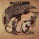 Above / Below/The Acacia Strain