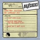 John Peel Session [7th September 1977]/Buzzcocks