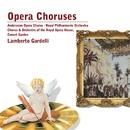 Opera Choruses/Lamberto Gardelli