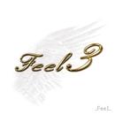 Feel 3/Feel