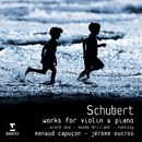 Schubert Grand Duo/Renaud Capuçon/Jerome Ducros