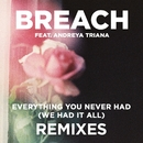 Everything You Never Had (We Had It All) (feat. Andreya Triana) [Remix Package]/Breach