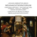 Bach, JS : Weihnachtsoratorium [Christmas Oratorio] (DAW 50)/Nikolaus Harnoncourt