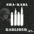 Karliber .375/Sha-Karl
