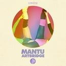 Artbridge (Remixes)/MANTU