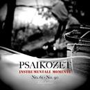 Instrumentale Momente No. 61 - No. 90 (Teilaufnahmen)/Psaikozet