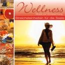 Wellness - Streicheleinheiten für die Seele/Korte