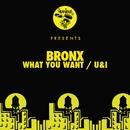 What You Want / U&I/Bronx