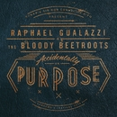Accidentally on Purpose (Sanremo's Festival 2014)/Raphael Gualazzi & The Bloody Beetroots