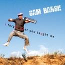 I Forgot What You Taught Me/Sam Barsh