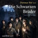 Die schwarzen Brüder (Gekürzte Fassung)/Lisa Tetzner