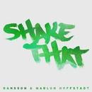 Shake That/Dansson
