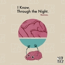 I Know / Through the Night (Remixes)/Botnek